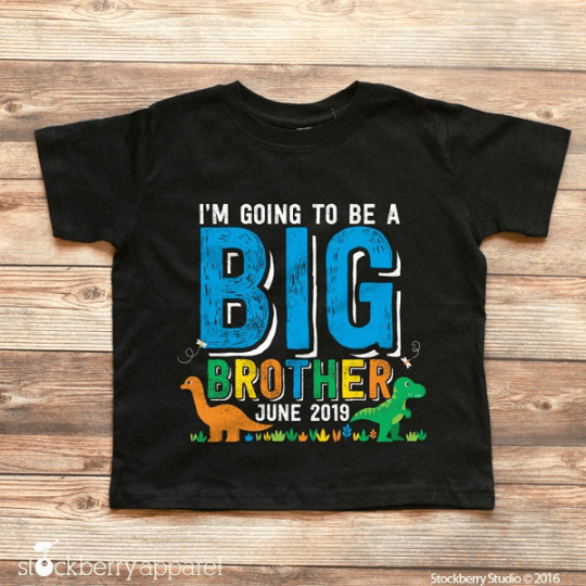 Dinosaur Big Brother Shirt