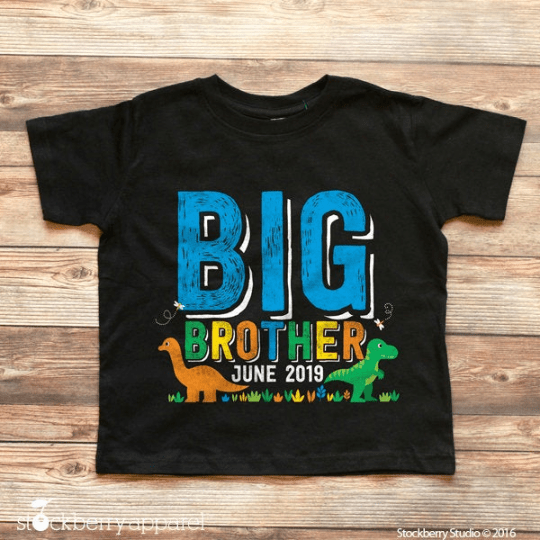 Dinosaur Big Brother Shirt - Stockberry Studio