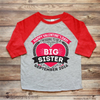 Valentine's Day Big Sister Pregnancy Announcement Shirt
