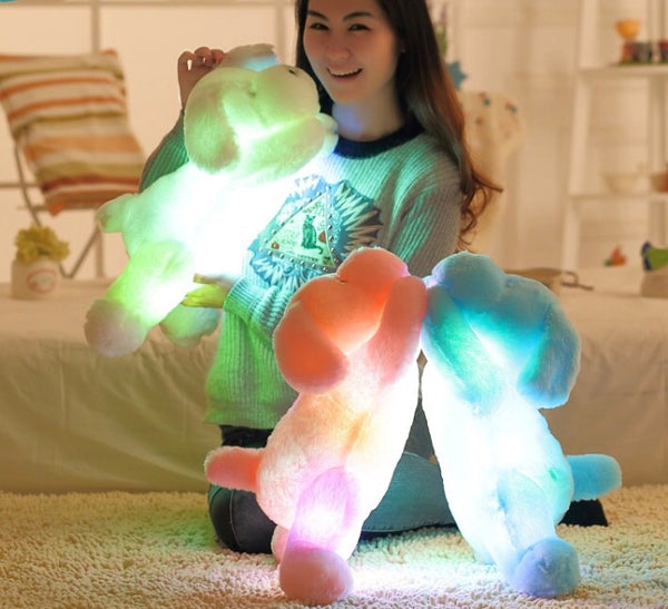Light Up/ LED Puppies