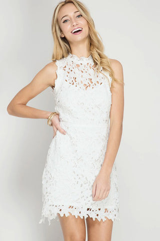 Lace Flare Mini Dress