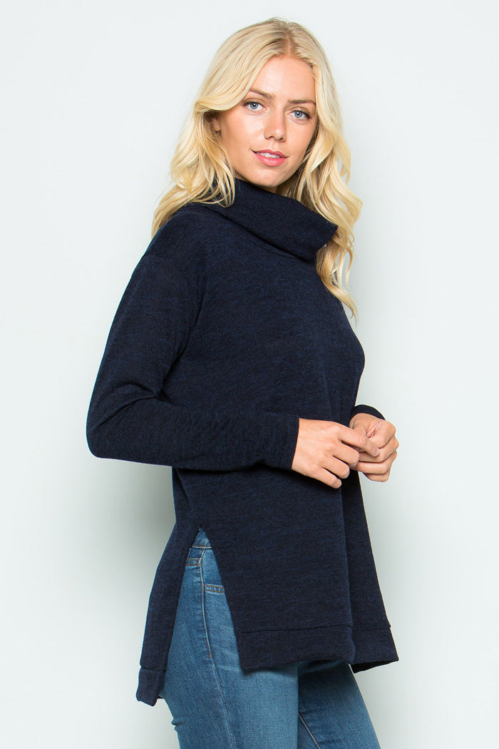 Turtleneck Solid Tunic Top