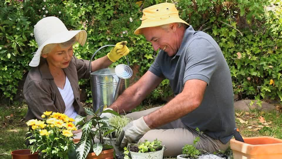Enjoyable Gardening Tips For The More Mature Gardener