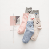 socks-with-dog-designs