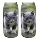 Cat Print Women Or Girls Socks - Garden Oasis