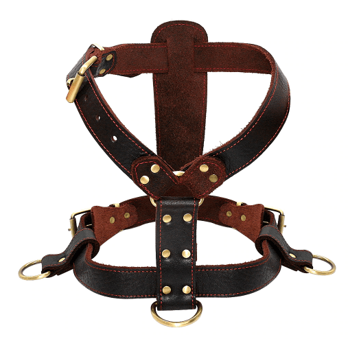 Leather-Dog-Harness