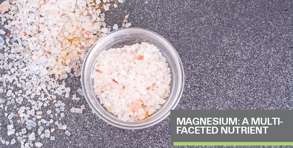 Magnesium: A Multi-faceted Nutrient