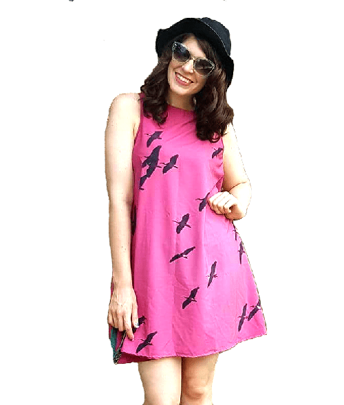 IbisSky Pink ALine Dress