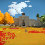The witness art