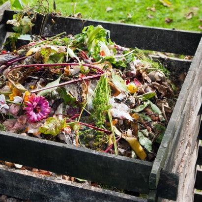 Why it is great to have your own Compost Bin