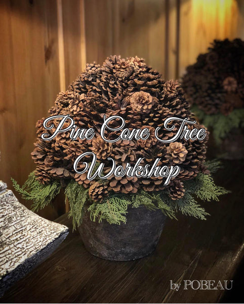 Pine Cone Tree Workshop - Pobeau
