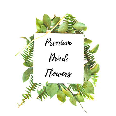 Collection of Premium Dried Flowers