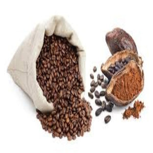 Buy Cocoa Powder Online in India - The Art Connect