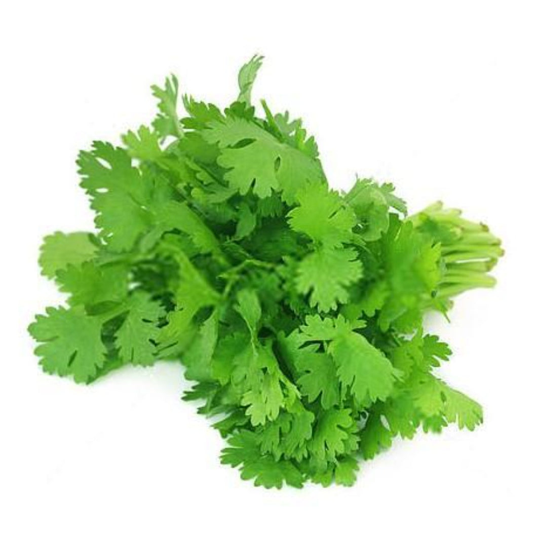 Buy Coriander Essential Oil Online in India - The Art Connect