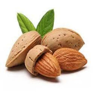 Buy Creamy Almond Flavour Oil Online in India - The Art Connect