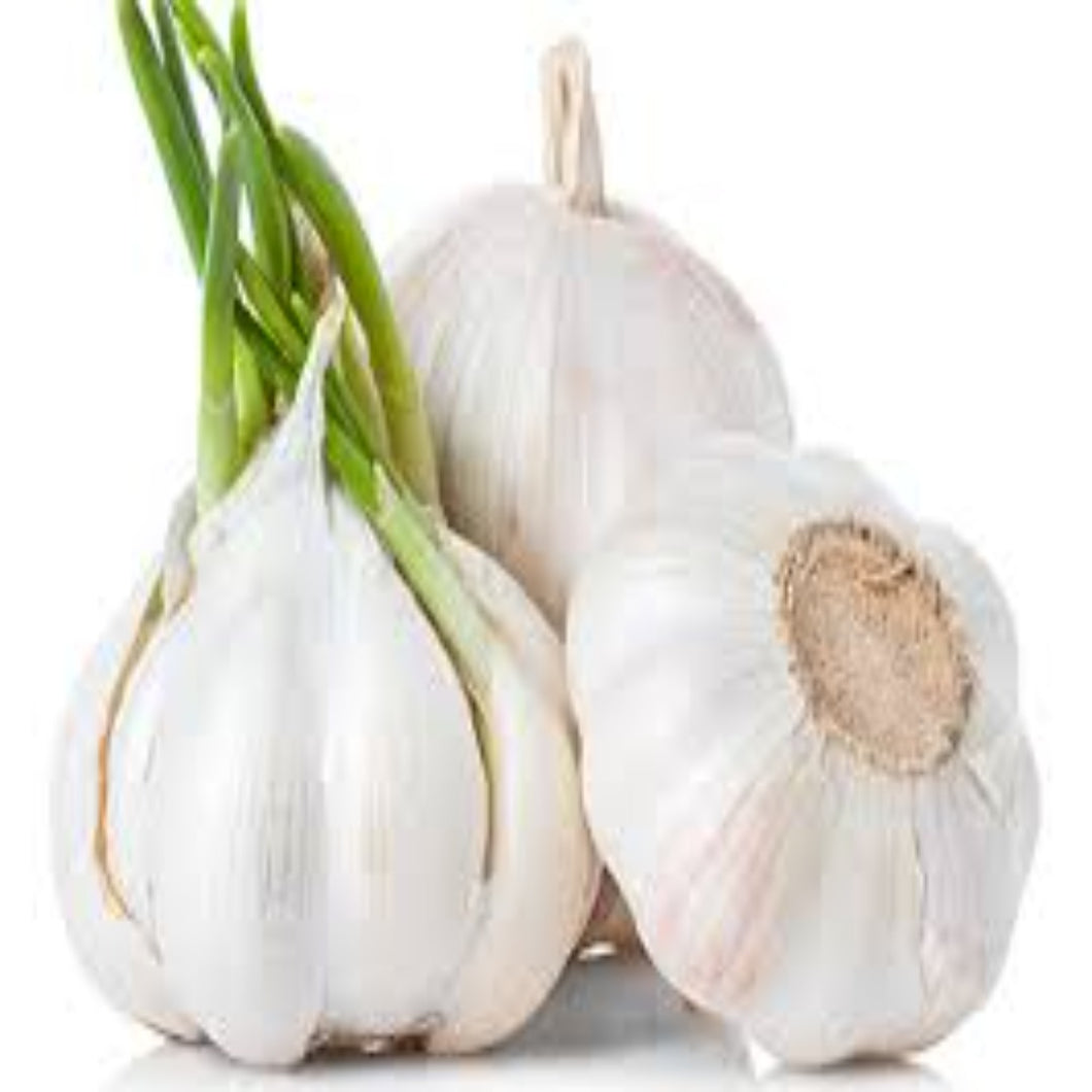 Buy Garlic Essential Oil Online in India - The Art Connect