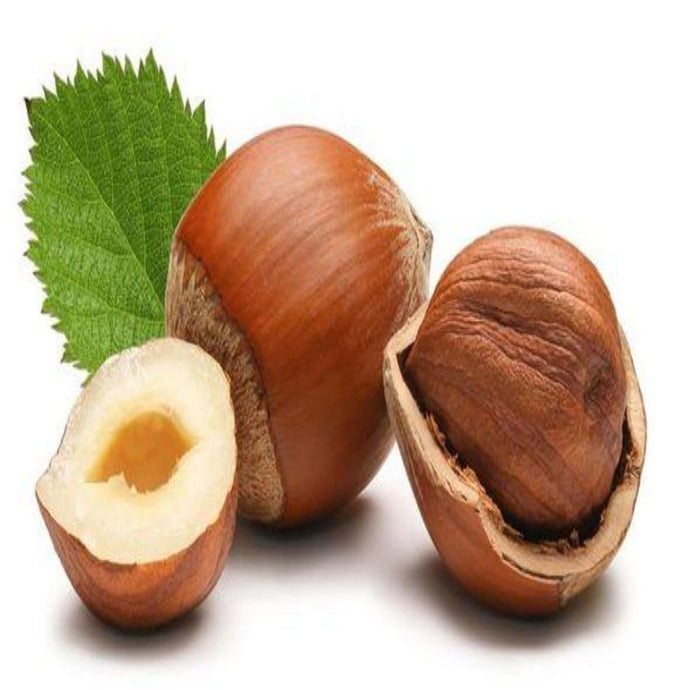 Buy Hazelnut Carrier Oil Online in India - The Art Connect