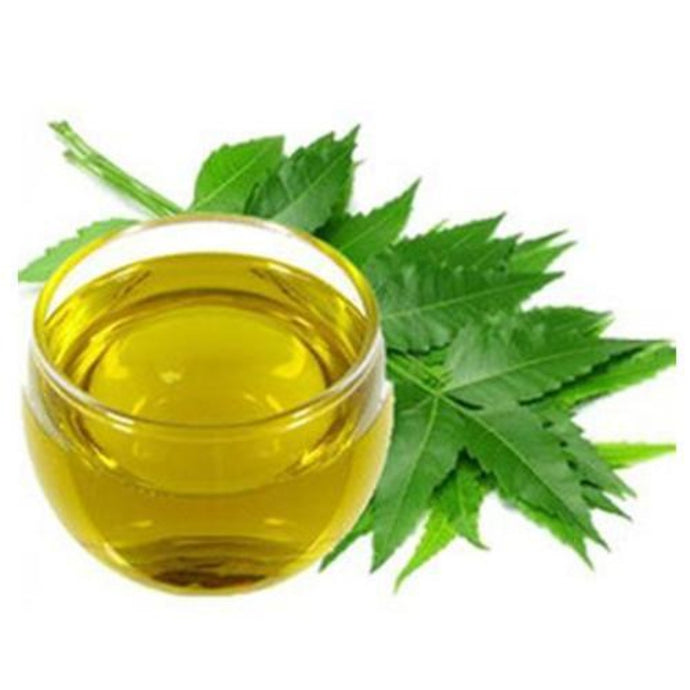 Buy Neem Carrier Oil Online in India - The Art Connect