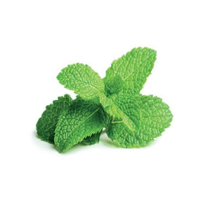 Buy Peppermint Flavour Oil Online in India - The Art Connect