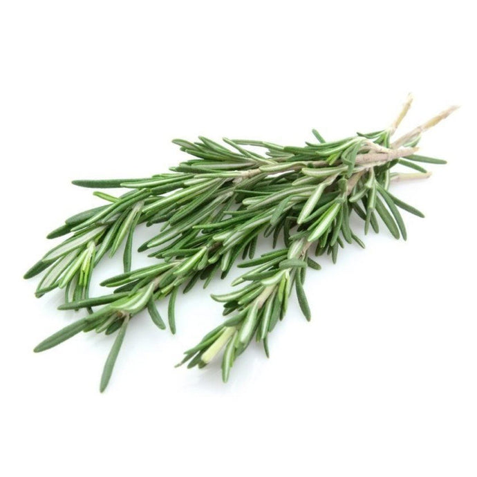 Buy Rosemary Hydrosol Online in India - The Art Connect
