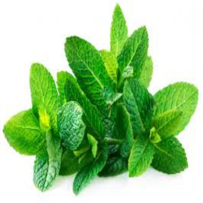 Buy Spearmint Essential Oil Online in India - The Art Connect
