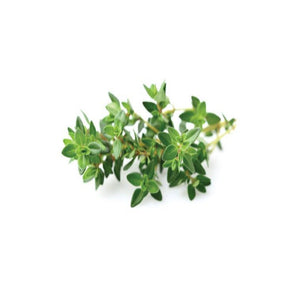 Buy Thyme Essential Oil Online in India - The Art Connect