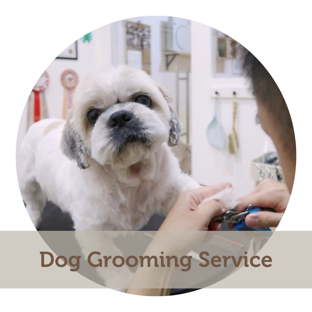 Dog Grooming - Ala Carte Trimming Service
