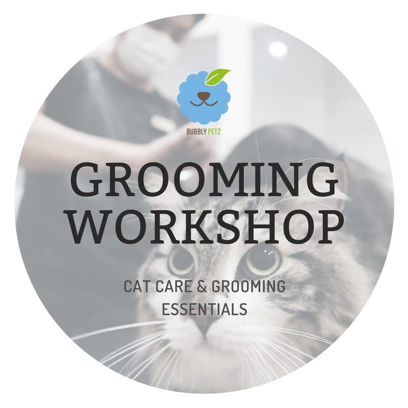Cat Grooming Workshop Slot 27 JULY 2019 8am-11am