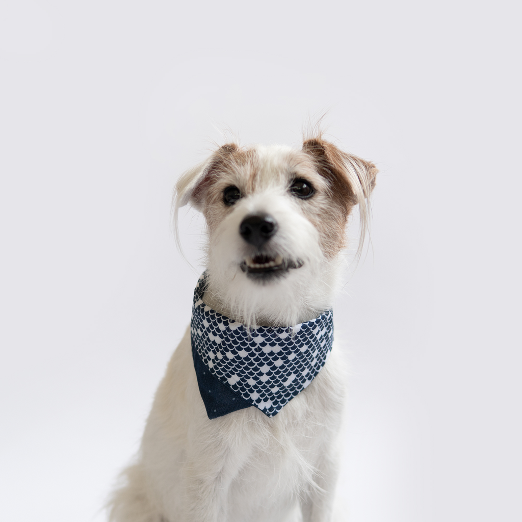 ohpopdog Blue Waves Prints Bandana
