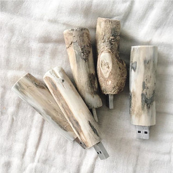 WOOD TWIG USB