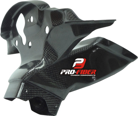 KAWASAKI ZX-10R RR 2016-2019 PRO-FIBER Carbon Race Air Intake with Clock Support