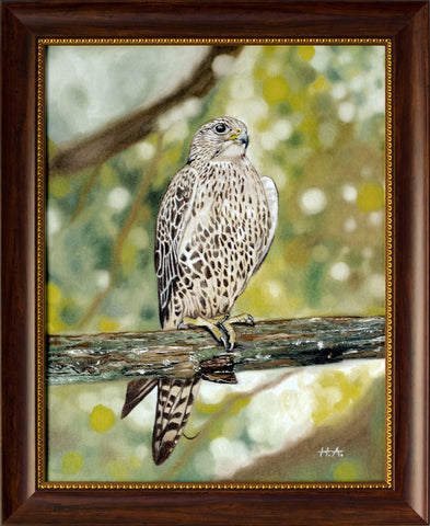 The Falcon - Oil On Canvas Framed <br> 54 x 44 cm - Free Shipping Worldwide