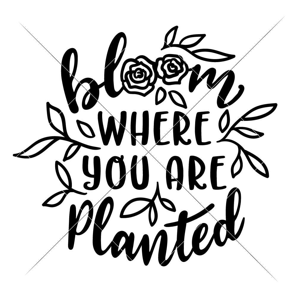 Bloom Where You Are Planted Svg Png Dxf Eps Chameleon Cuttables Llc