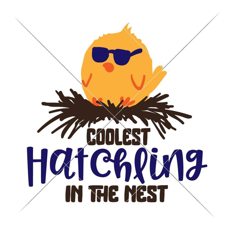 Coolest Hatchling In The Nest Svg Png Dxf Eps Svg Dxf Png Cutting File