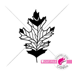 Fall Leaf svg png dxf eps jpeg SVG DXF PNG Cutting File