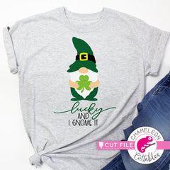 Lucky and I gnome it Gnomes St. Patricks Day svg png dxf eps jpeg SVG DXF PNG Cutting File