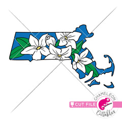 Massachusetts state flower mayflower layered svg png dxf eps jpeg SVG DXF PNG Cutting File