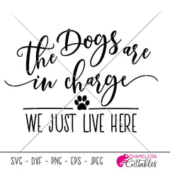 The dogs are in charge we just live here svg png dxf eps SVG DXF PNG Cutting File