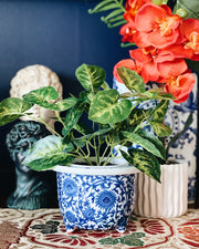 Small Blue and White Footed Jardiniere Planter
