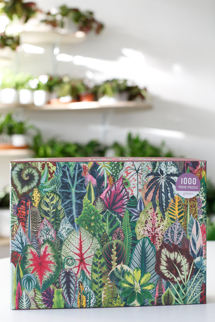 Indoor Jungle Puzzle