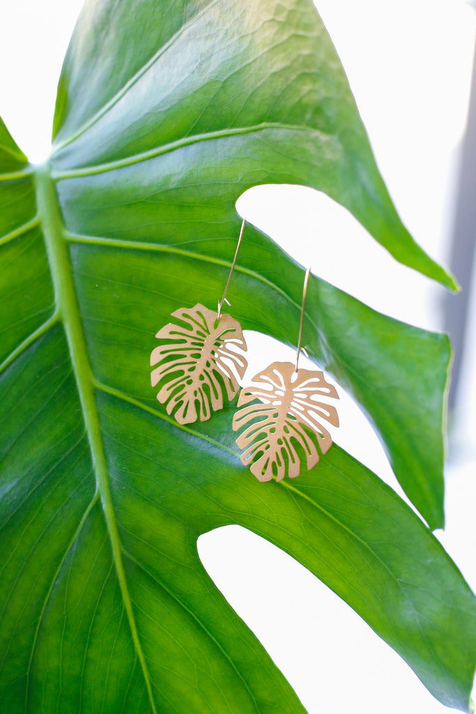 Brass Monstera Deliciosa Earrings