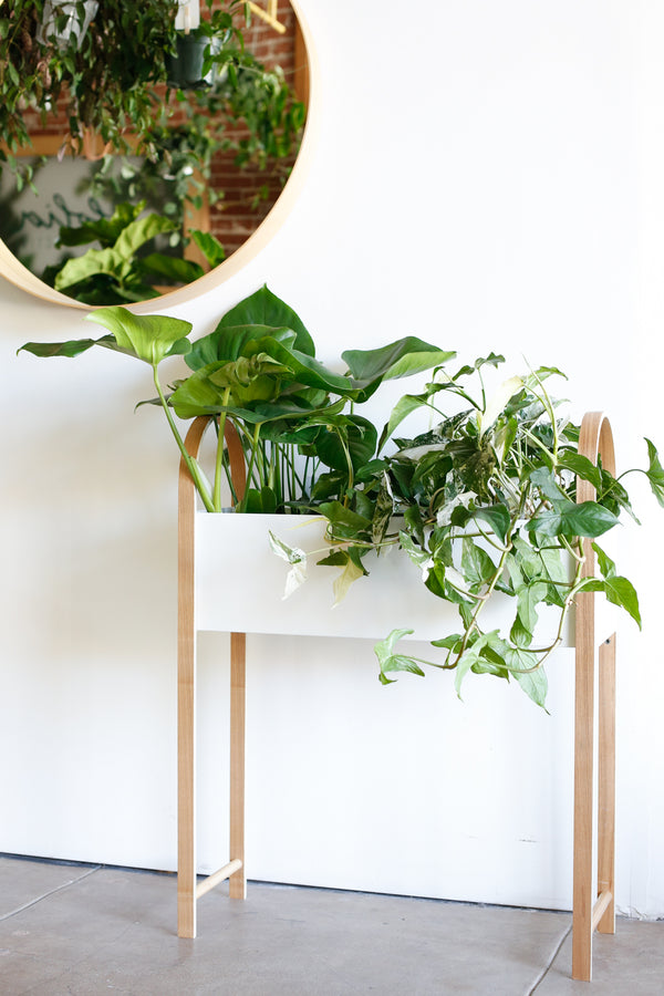 Grove Standing Planter