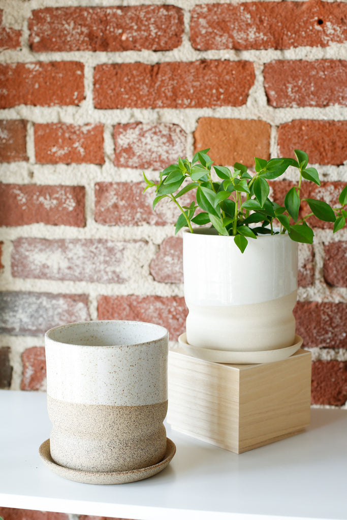 Form Planter- Two Tone