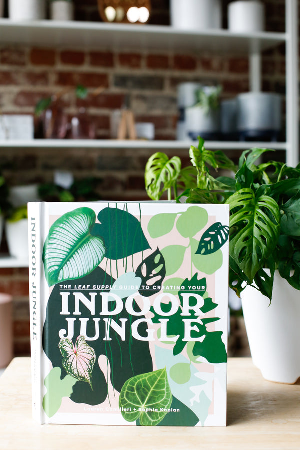 Indoor Jungle Book