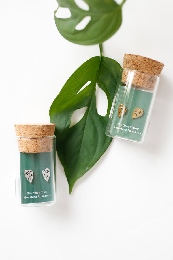 Monstera adansonii Stud Earrings
