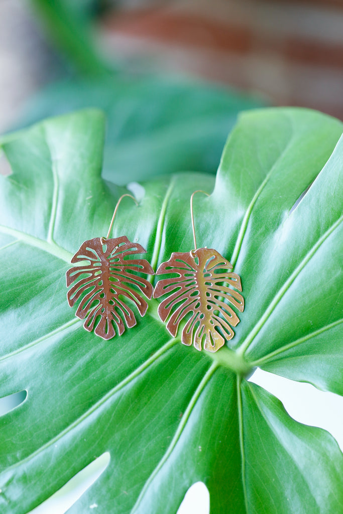 Rose Gold Monstera Deliciosa Earrings