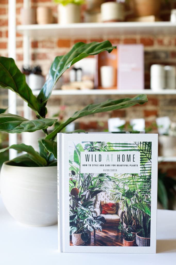 Wild at Home -Signed Copy
