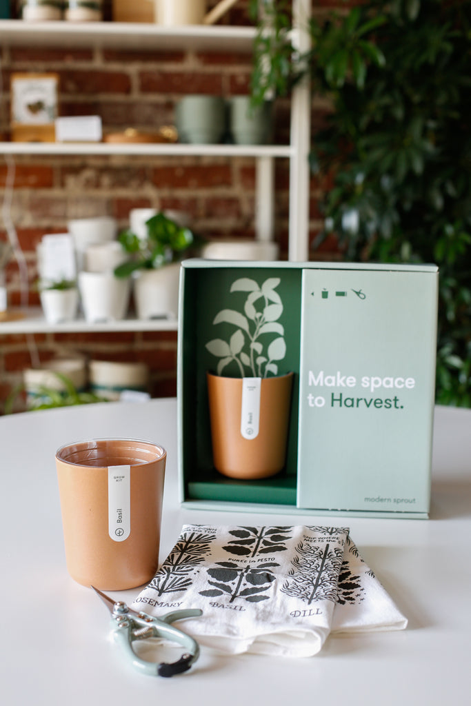 Harvest Gift Set - SALE