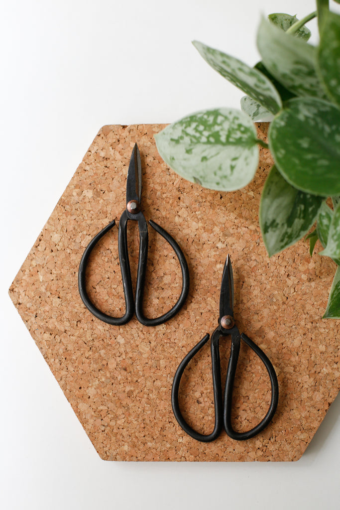 Mini Bonsai Shears