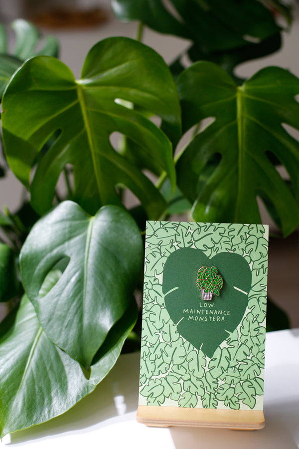 Monstera Plant Pin